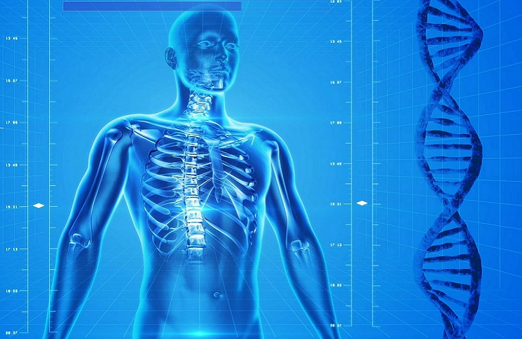 skeleton medtech