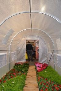 tunel-ogrodniczy