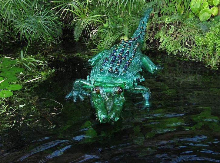 aligator butelka pet