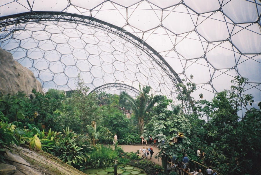 Eden_project_tropical_biome