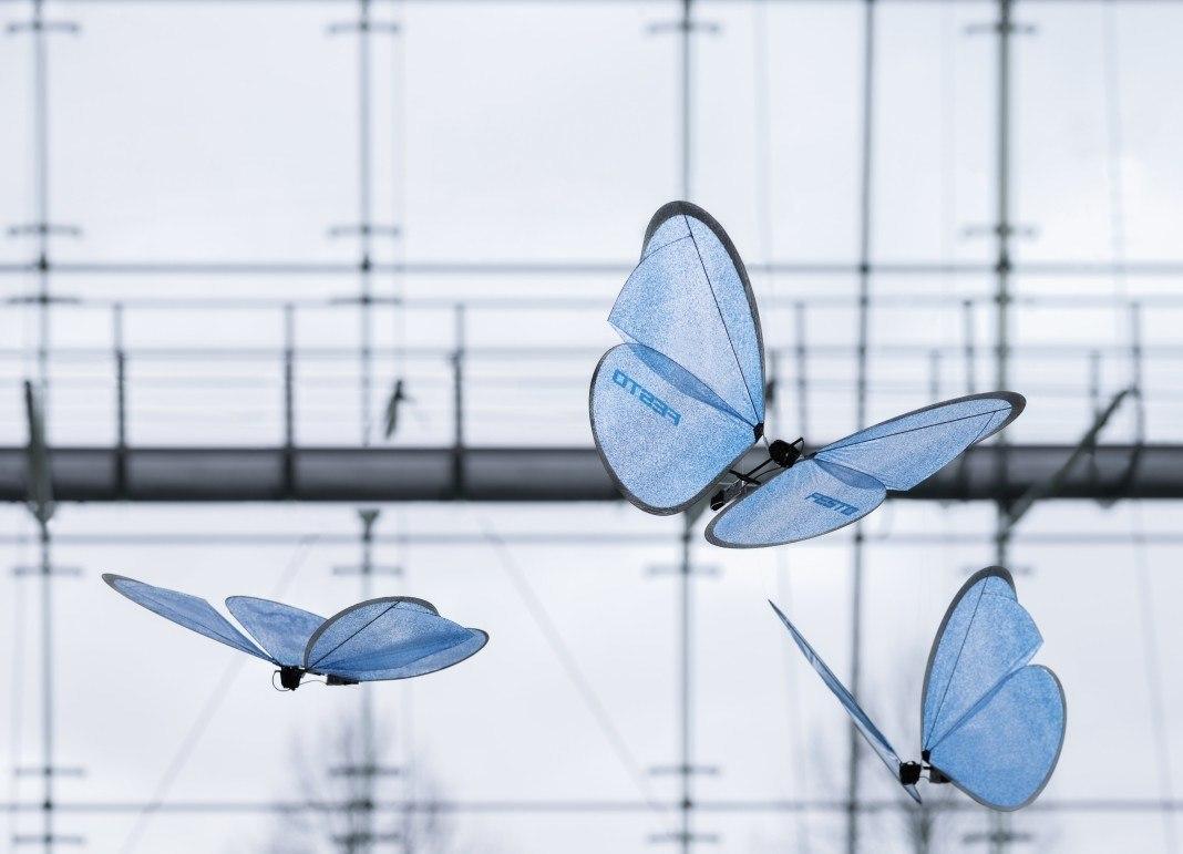 Motyle podczas ładowania.