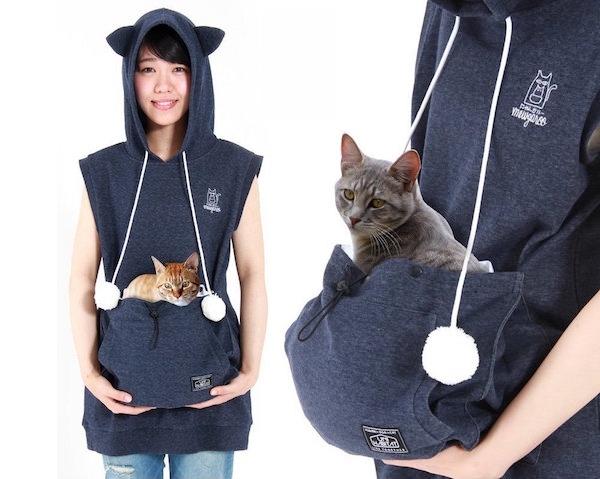 bluza dla kota