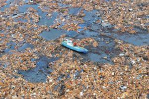 wielka wyspa śmieci