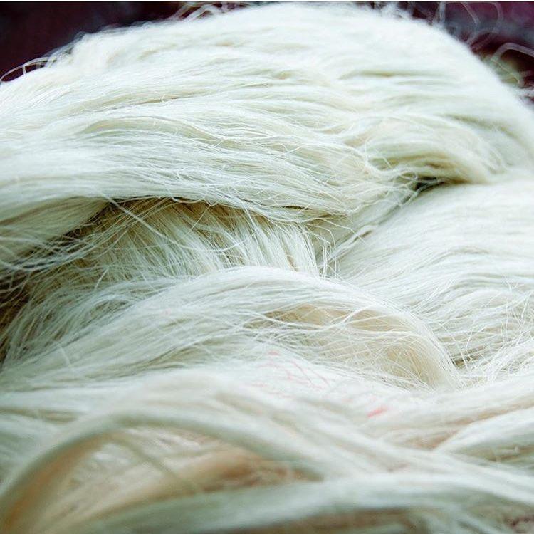 Włókna otrzymywane z liści w procesie produkcji