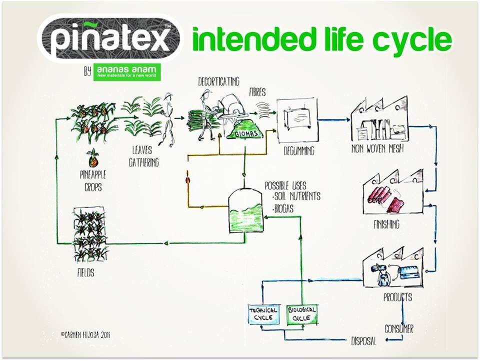 Cykl powstawania skóry Piñatex