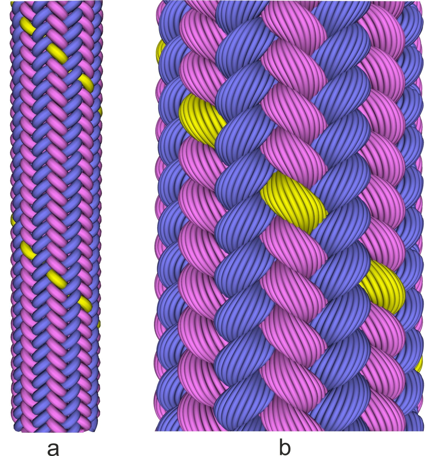 Figure 1Virtual rope with 32 strands. a) view of the macro level, b) close view with visualization of the filaments in the strands